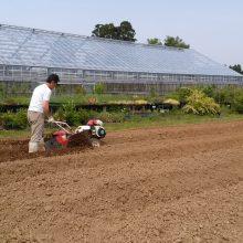 ラベンダー畑の作り方